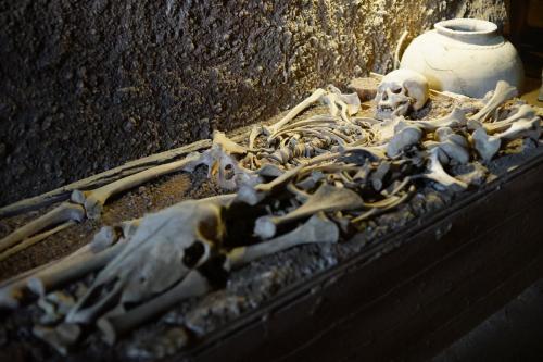 Лекция-экскурсия по курганной археологии